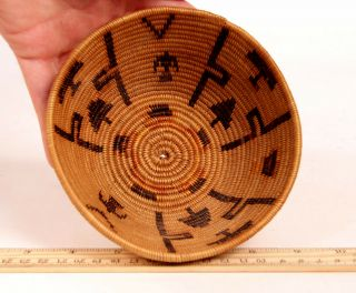 Antique Southern California Mission Indian Basket W/eagles,  Trees Motifs C1920