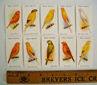 Ca 1933 Aviary & Cage Birds Players Tobacco Cards Complete Set 50